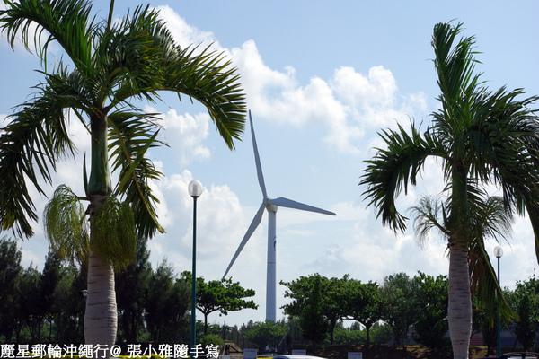停車場附近的風車