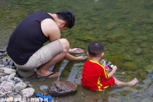 甥舅倆抓蝌蚪抓得很開心
