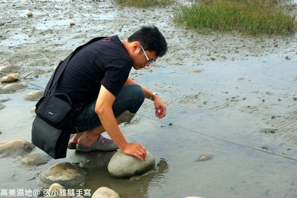 又開始抓螃蟹了