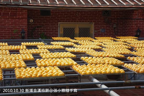 排排站的柿子正在接受九降風洗禮