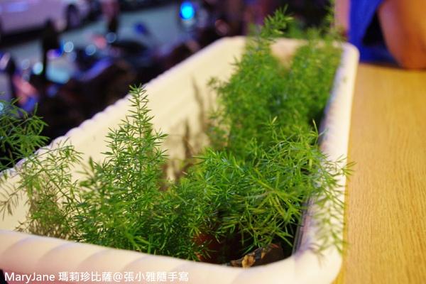 桌旁的盆栽