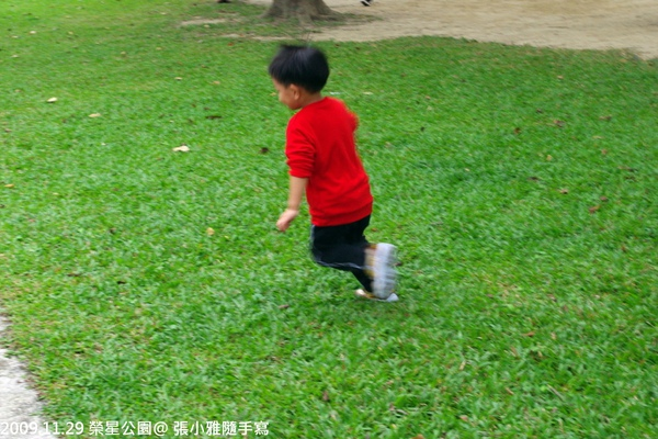 開心的在草原上奔跑