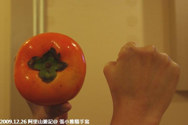 下午在路邊買的甜柿,跟我的拳頭一樣大