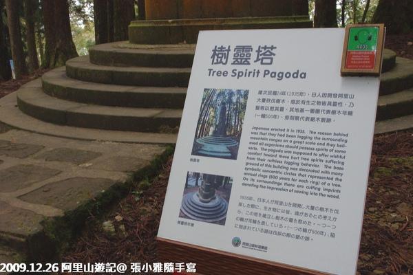日本人砍了樹再來假惺惺蓋塔紀念