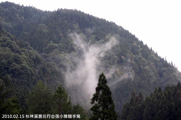 對面山頭的山嵐