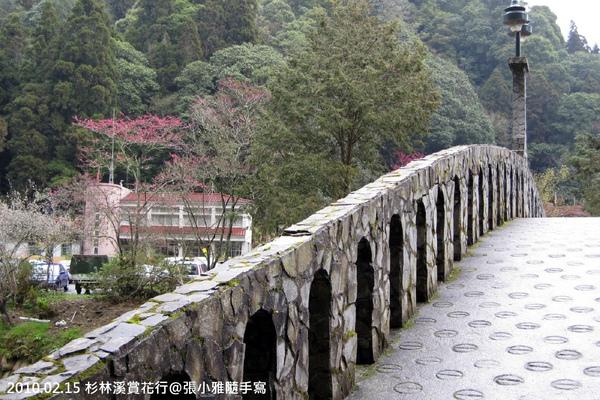 拱橋上的風景依舊是櫻花