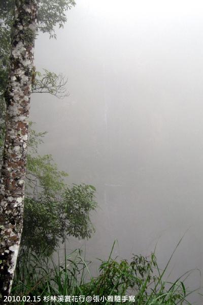 開始起霧,看不到中間那細細一條瀑布了