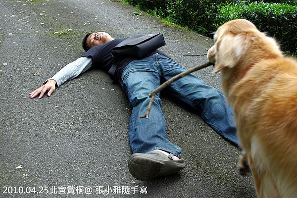 堯哥又要躺大字型,夏天趕快過來關心一下