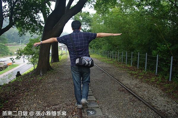 鐵道必拍姿勢