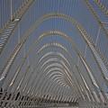 20080617-CANON 40D 078.jpg