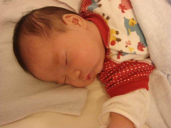 熟睡中的Julia