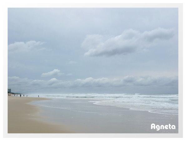 到海灘去玩水