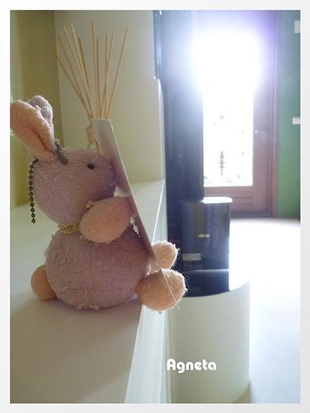 是小兔子啦XDD