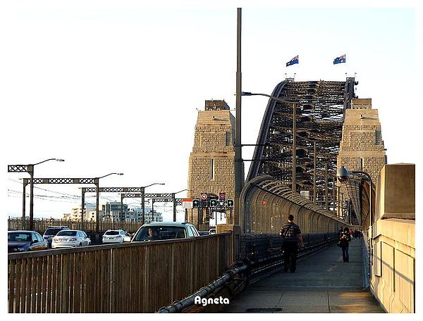繼上回橋會晃半途落跑,這次要堅持走完海港大橋!