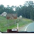前往Natrual Bridge 觀看螢光蟲