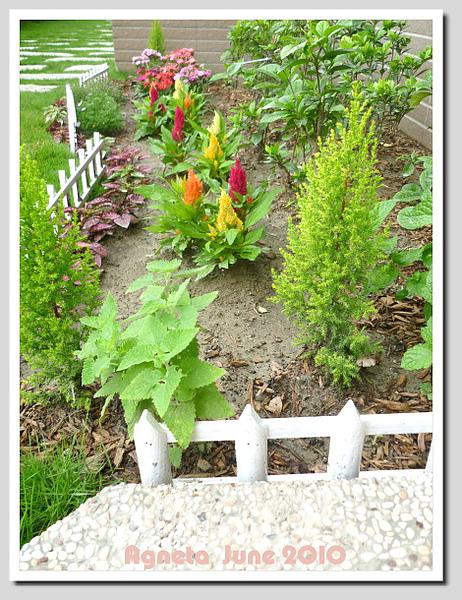 白色小柵欄有花園的感覺XD