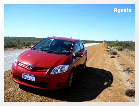 在澳洲第二台車,頭又大的可樂娜(掀背)