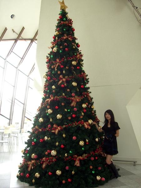 博物館內的聖誕樹