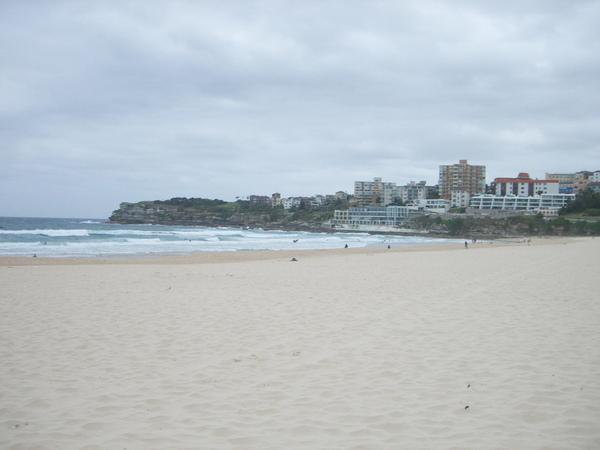 白淨的沙灘~~bondi~~終於踩到你了!