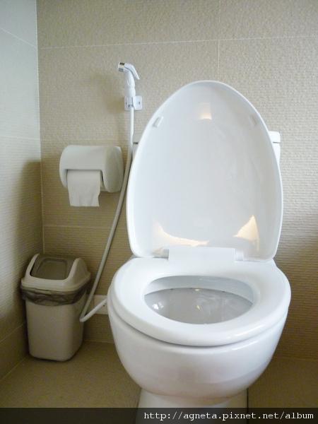 主臥衛浴的衛生紙架換成白色陶瓷的