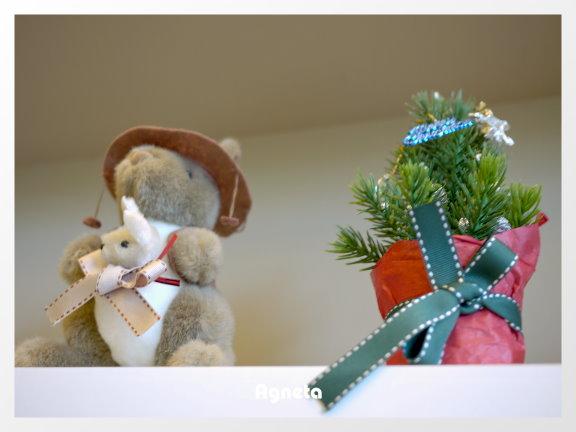 袋鼠跟小聖誕樹