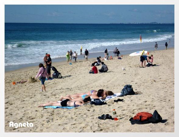 要離開的這天 天氣超好 海灘都是人 也有人曬太陽
