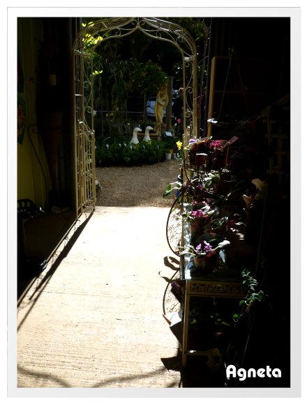 園藝店裡面有溫馨咖啡店