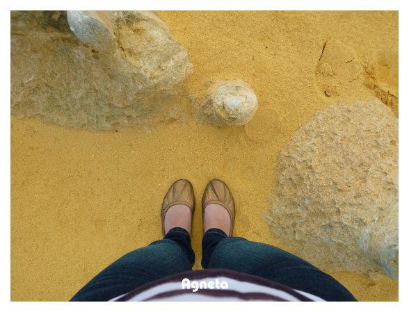 喜歡這裡的黃沙礫,摸起來很舒服