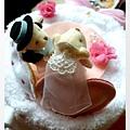改造後最適合新人熊的地方 當然就是結婚蛋糕啦!!