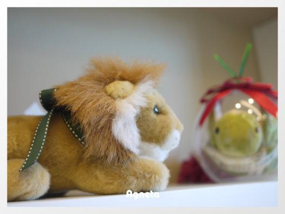 弟弟07年給我的小獅子