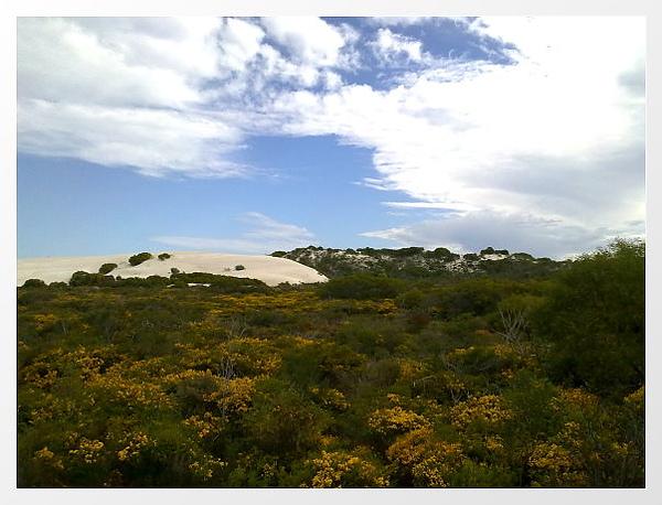 很神奇!最上面是白色沙丘~~