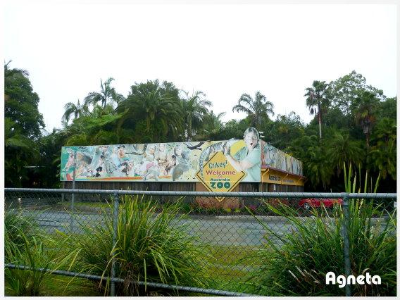 Australia Zoo 就是鱷魚先生的動物園