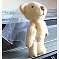新娘熊大改造 開始!