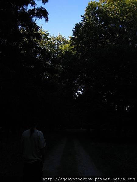 照片 181.jpg