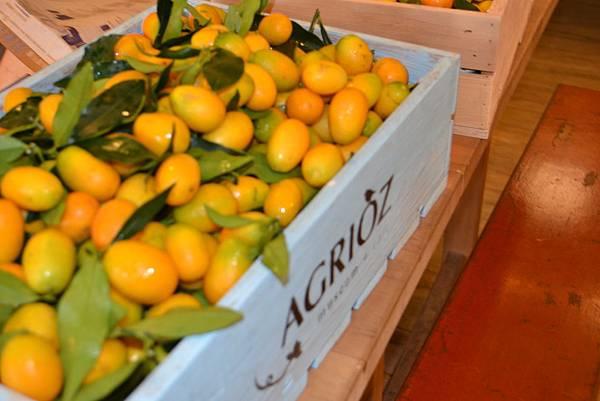 20111124-1又到了金橘的產季,整個宜蘭與橘之鄉,都閃耀著金光!.jpg
