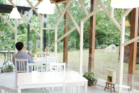 20111207-5伴著窗外的陽光與綠意.JPG