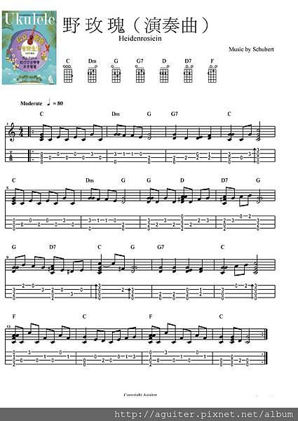 3-4 野玫瑰(演奏曲)ok