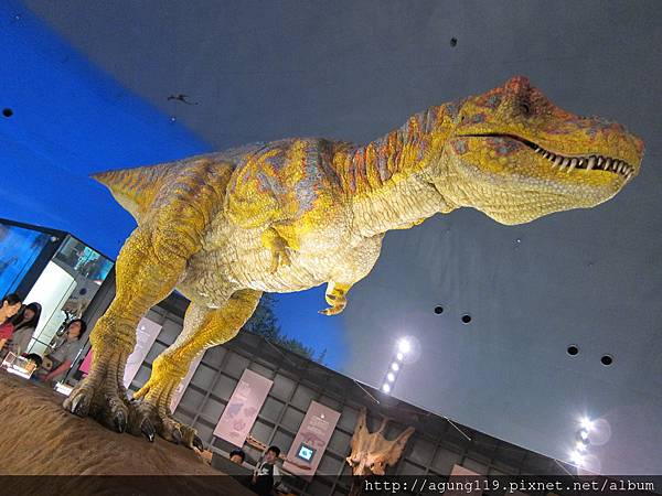 02-093-雄偉的恐龍