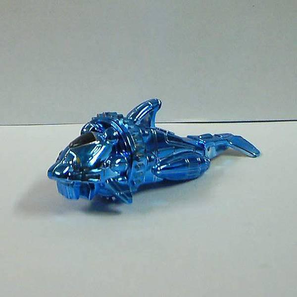 03-藍鯊