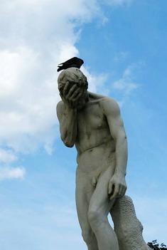 這一幕超好笑....鴿子停在他頭上他一副很委屈的樣子