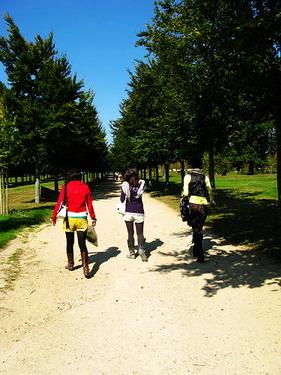 可以很奢侈的散步在凡爾賽
