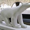 超可愛的北極熊