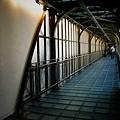 前身是車站的奧塞保留了鋼鐵與光線完美的結合