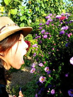 讓華姊也忍不住想把花吃掉!!??