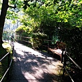 穿過小橋就到達仙境