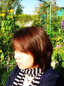 太陽慢慢出來了...陽光一照花更美葉更綠了