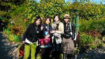 4朵花在莫內花園