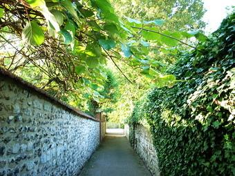 穿過小小的綠色小巷