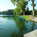 超大的鯉魚池塘,旁邊還有小船