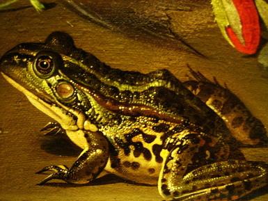 連青蛙的滑溜皮膚也做的很細..重點是他畫的很薄